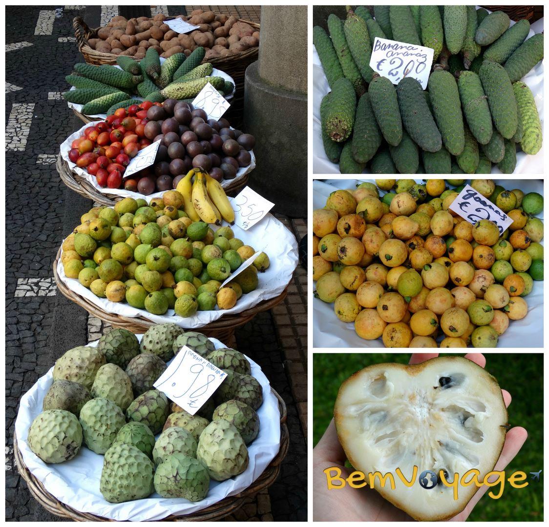 owoce logo